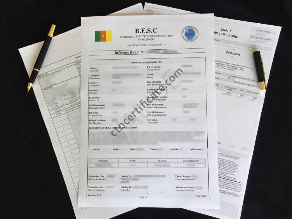 Cameroon BESC Certificate